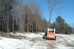 Our-bobcat-with-the-tree-shear-moving-a-cut-tree-to-the-wood-pile