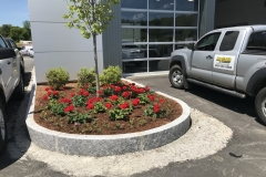2019 : Plants / color for Ford of Claremont